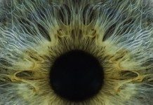 zaburzenia wzroku